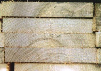 Robinia planken
